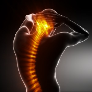 Low Back Pains | Pain in Upper Back | Pain in Middle of Back